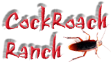 Cockroach Ranch